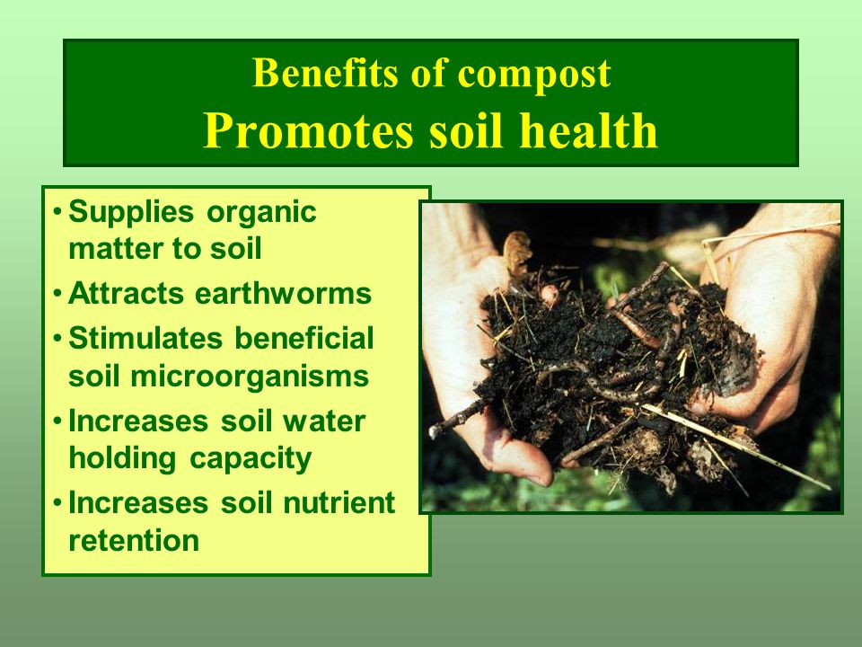 Benefits of compost Promotes soil health