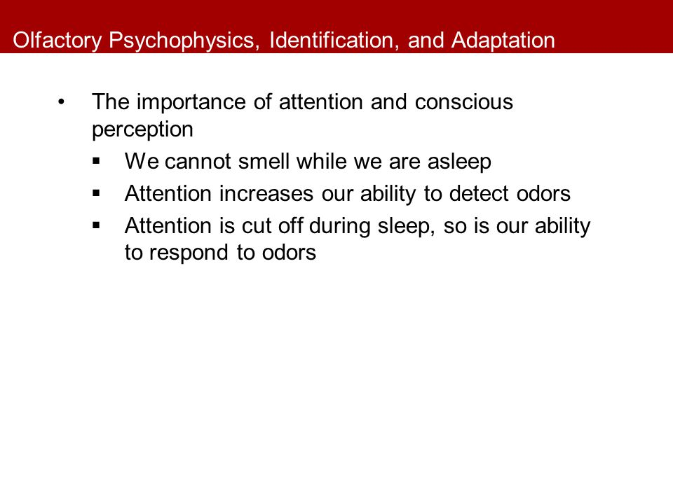 Olfactory Psychophysics, Identification, and Adaptation