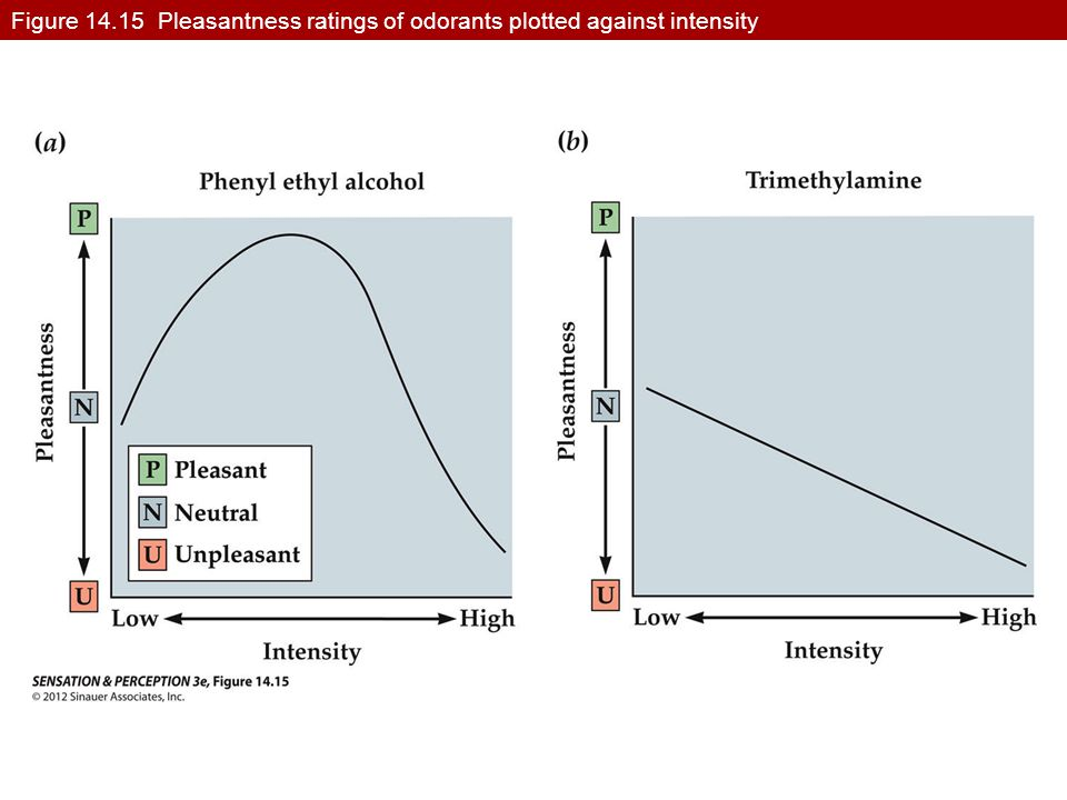 Figure 14.15 Pleasantness ratings of odorants plotted against intensity