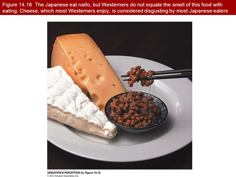 Figure 14.16 The Japanese eat natto, but Westerners do not equate the smell of this food with eating. Cheese, which most Westerners enjoy, is considered disgusting by most Japanese eaters