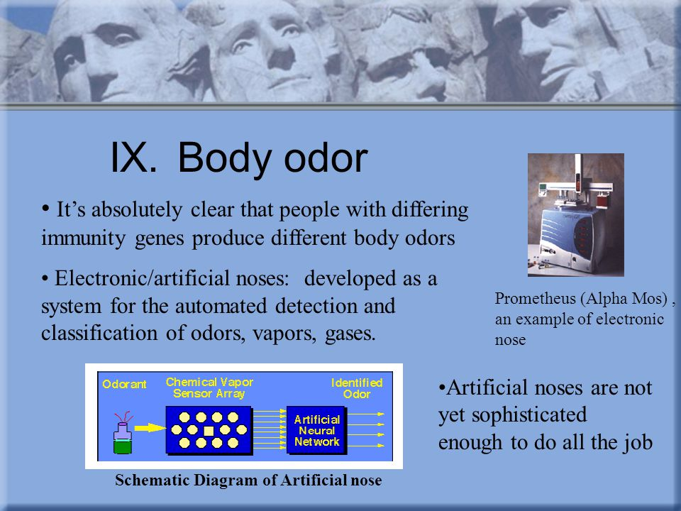 IX. Body odor It's absolutely clear that people with differing immunity genes produce different body odors.
