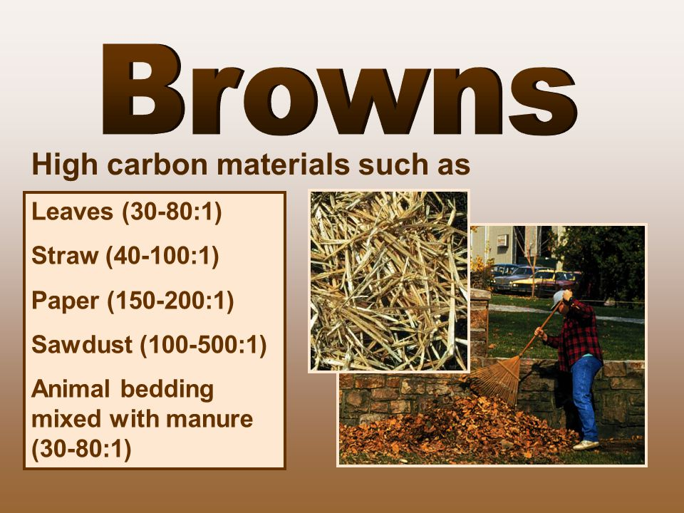 Browns High carbon materials such as Leaves (30-80:1) Straw (40-100:1)