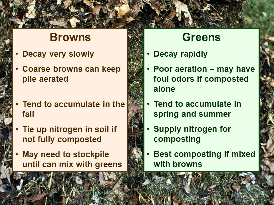 Browns Greens Decay very slowly Coarse browns can keep pile aerated