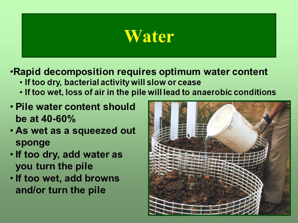 Water Rapid decomposition requires optimum water content