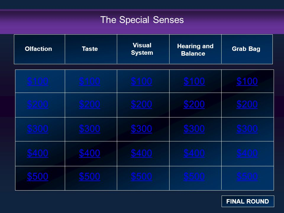 The Special Senses $100 $100 $100 $100 $100 $200 $200 $200 $200 $200