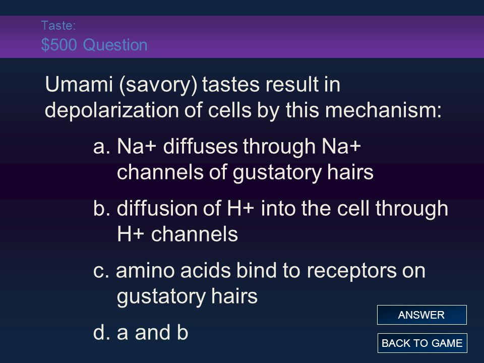 a. Na+ diffuses through Na+ channels of gustatory hairs