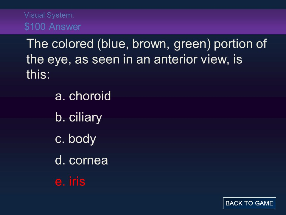 Visual System: $100 Answer