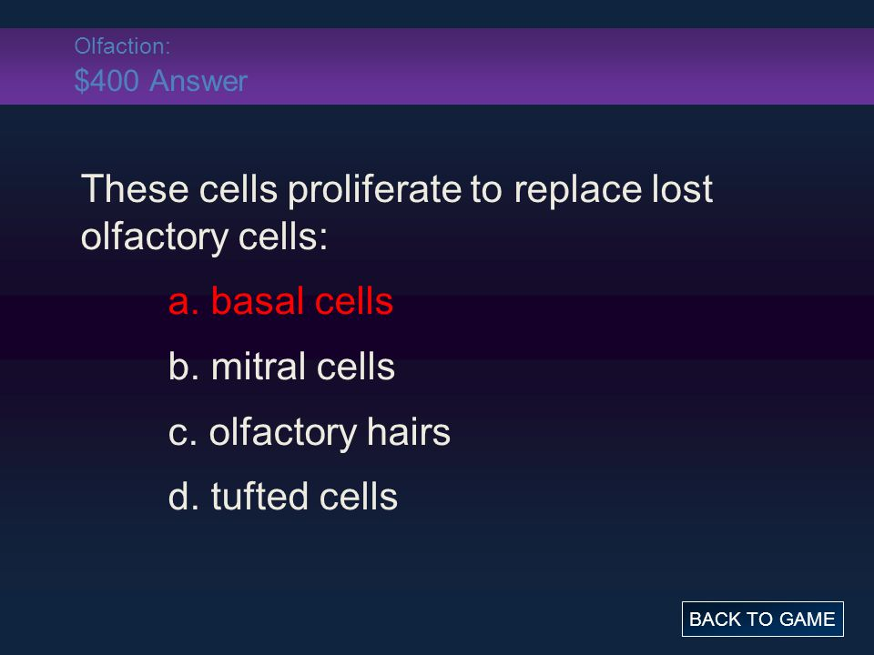 These cells proliferate to replace lost olfactory cells: