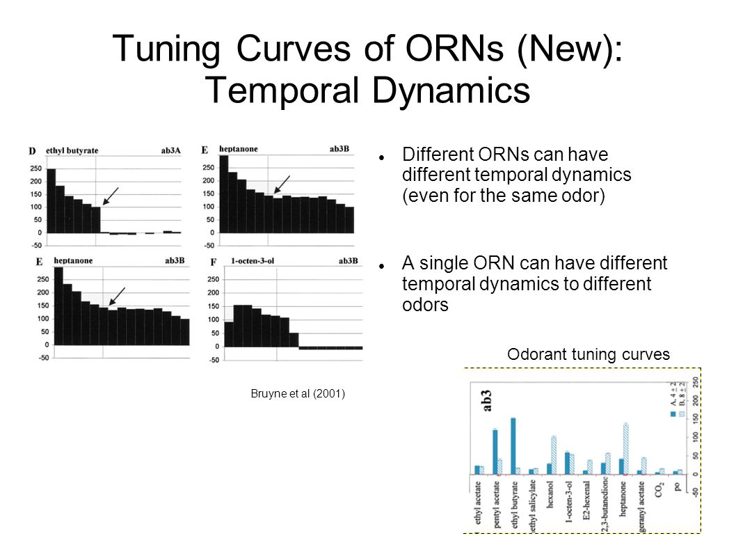Tuning Curves of ORNs (New): Temporal Dynamics