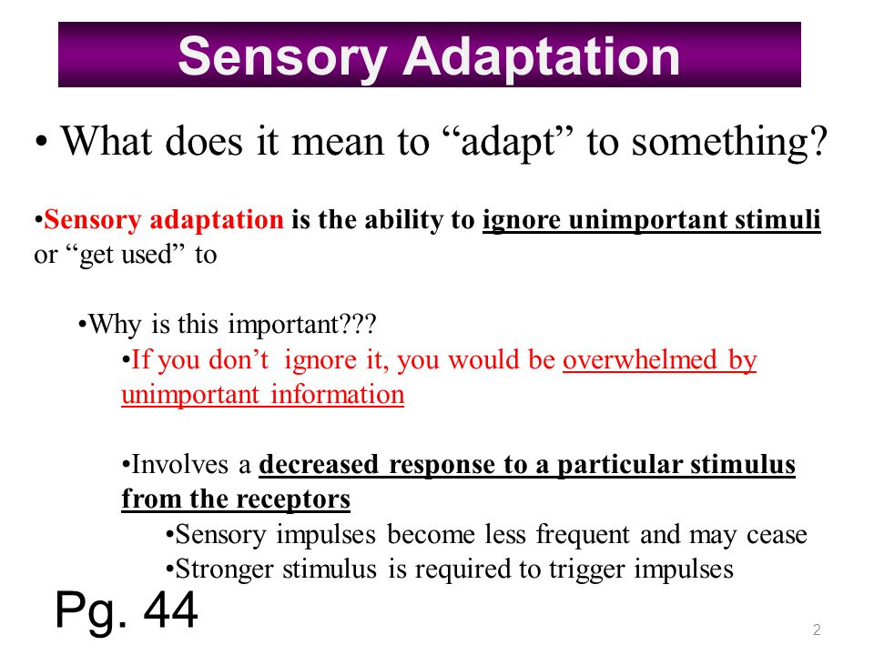 Sensory Adaptation Pg. 44 What does it mean to adapt to something
