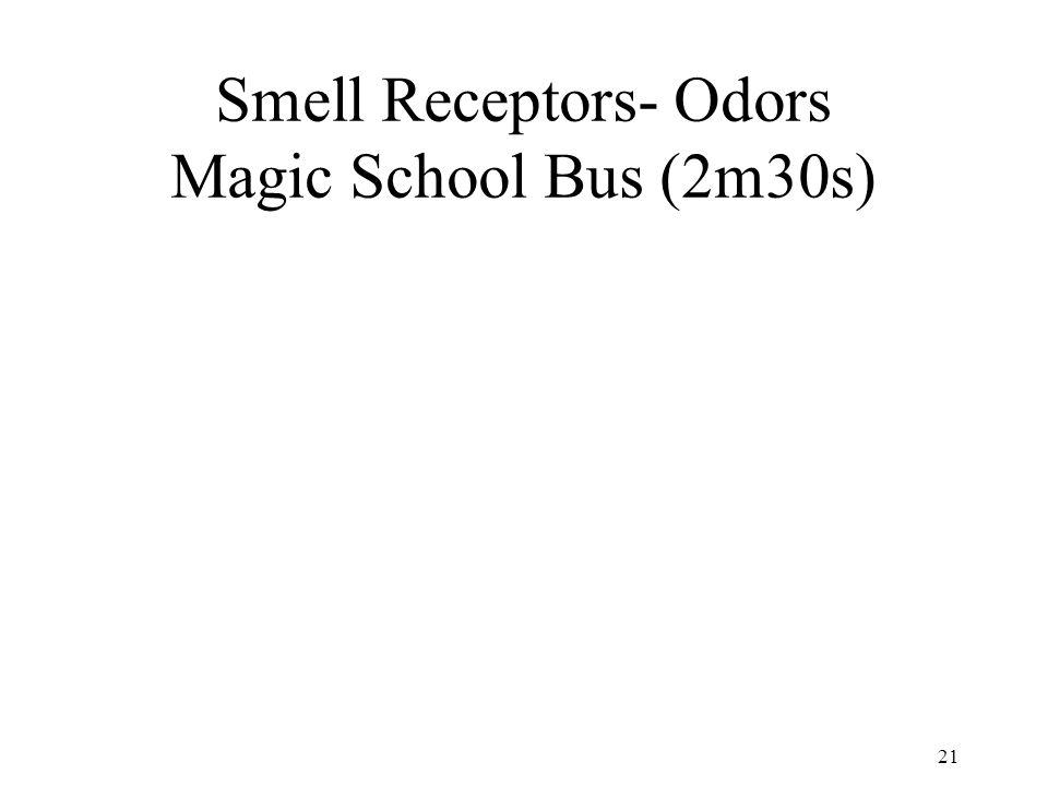 Smell Receptors- Odors Magic School Bus (2m30s)