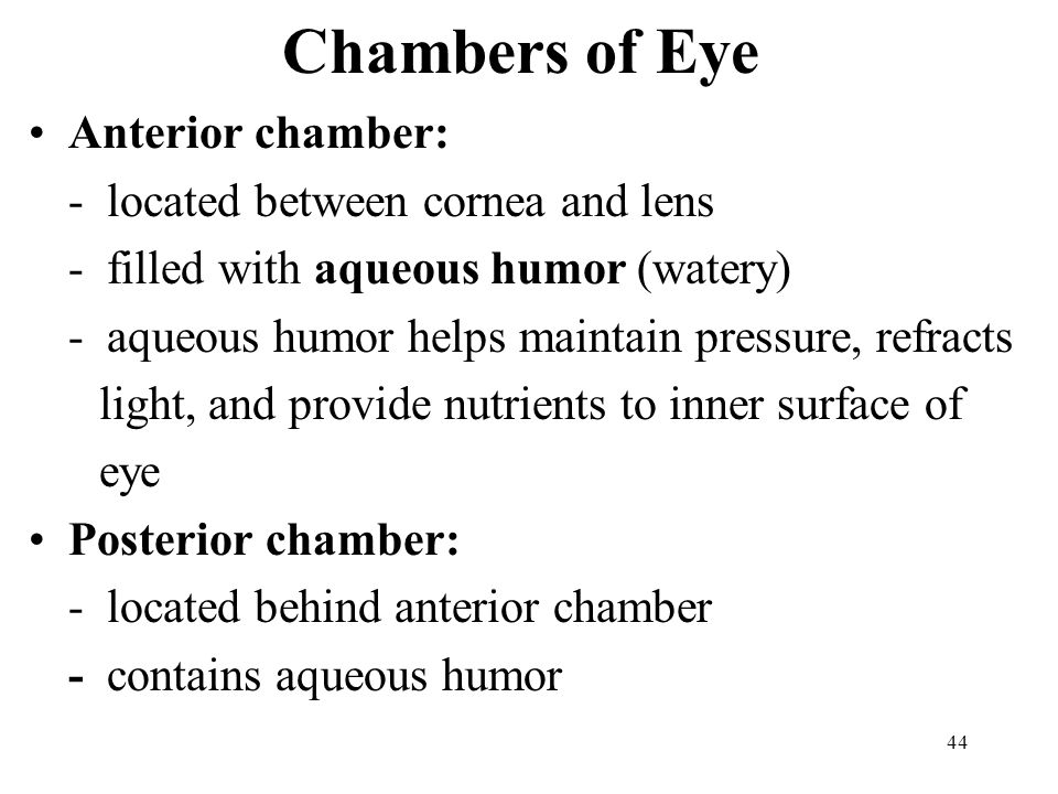 Chambers of Eye Anterior chamber: - located between cornea and lens