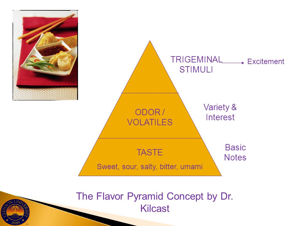 The Flavor Pyramid Concept by Dr. Kilcast