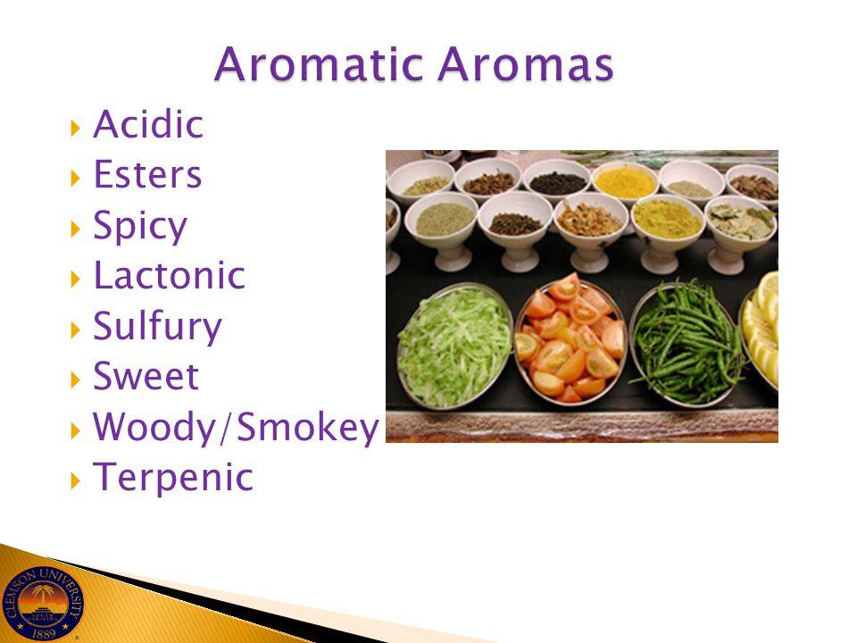 Aromatic Aromas Acidic Esters Spicy Lactonic Sulfury Sweet