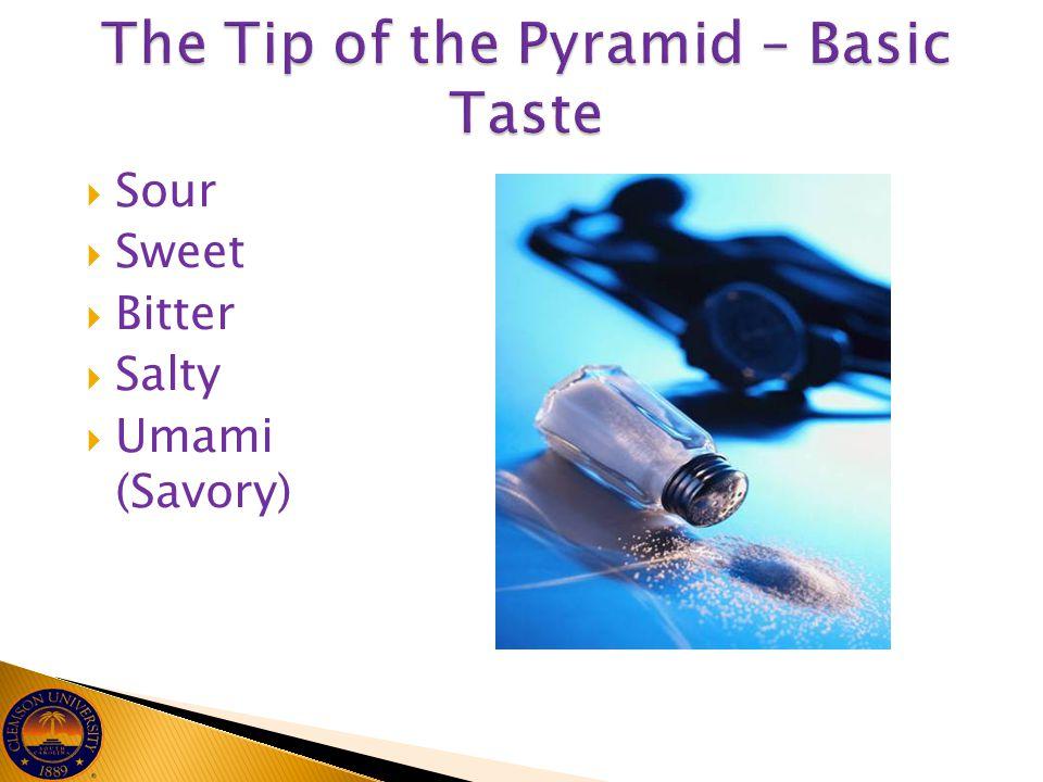 The Tip of the Pyramid – Basic Taste