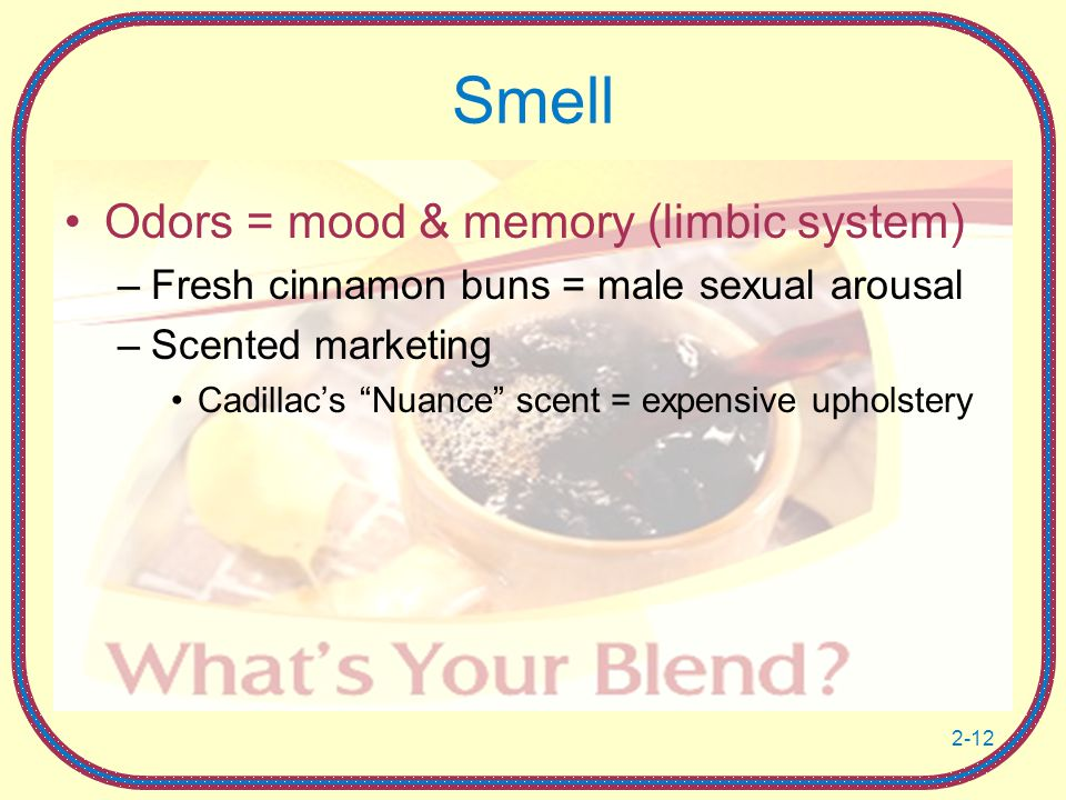 Smell Odors = mood & memory (limbic system)