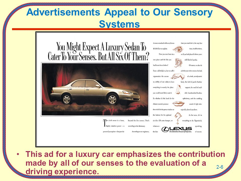 Advertisements Appeal to Our Sensory Systems