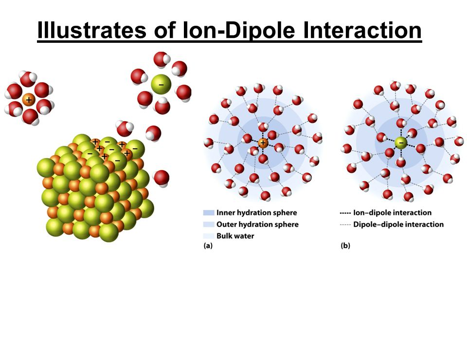 Illustrates of Ion-Dipole Interaction