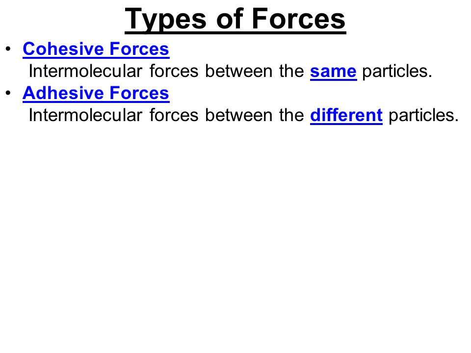 Types of Forces Cohesive Forces