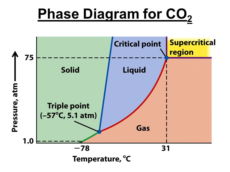 Phase Diagram for CO2