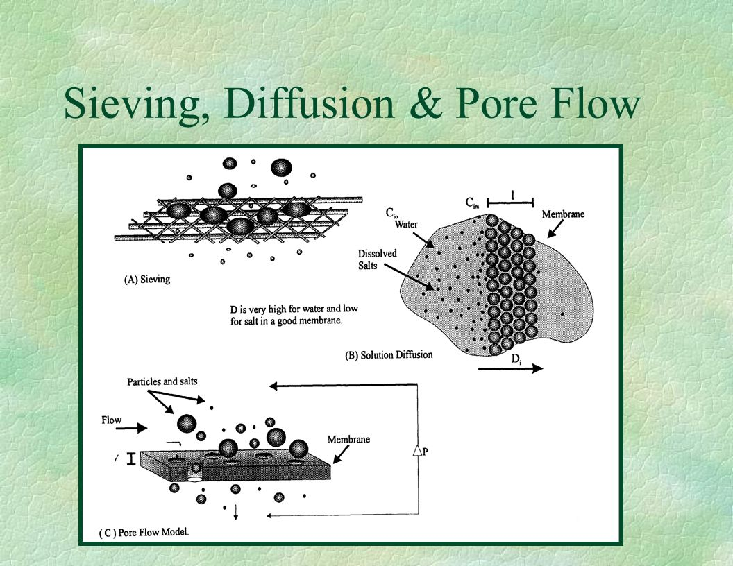 Sieving, Diffusion & Pore Flow