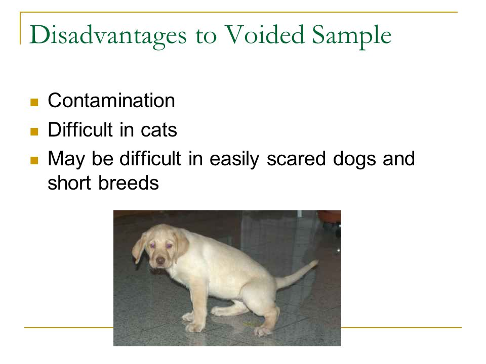 Disadvantages to Voided Sample
