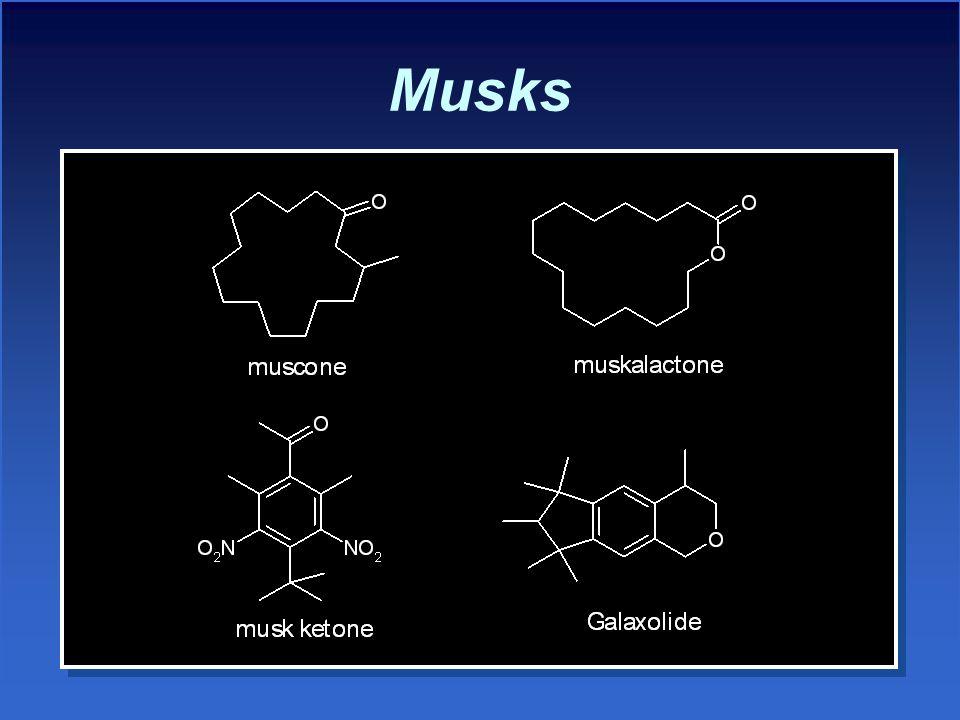 Musks