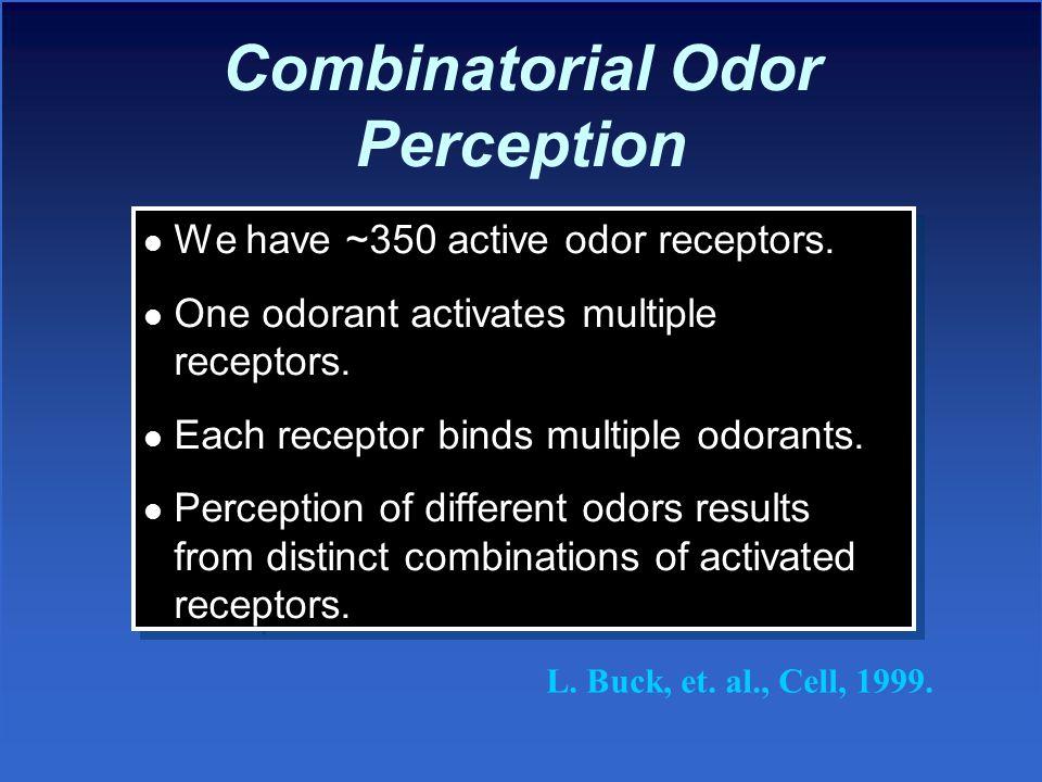 Combinatorial Odor Perception