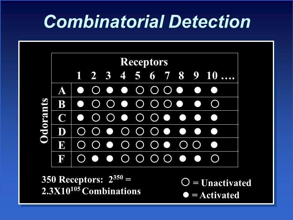 Combinatorial Detection