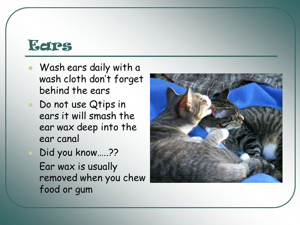 Ears Wash ears daily with a wash cloth don't forget behind the ears
