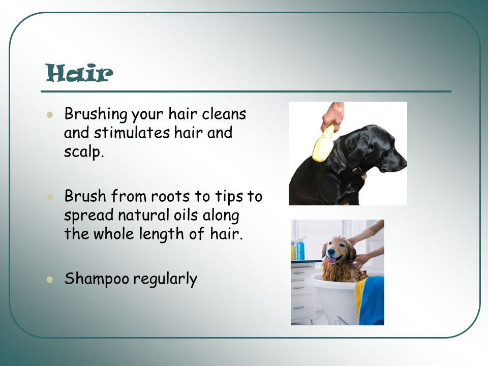 Hair Brushing your hair cleans and stimulates hair and scalp.