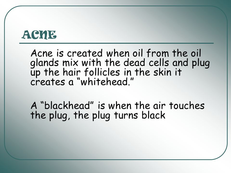 ACNE Acne is created when oil from the oil glands mix with the dead cells and plug up the hair follicles in the skin it creates a whitehead.