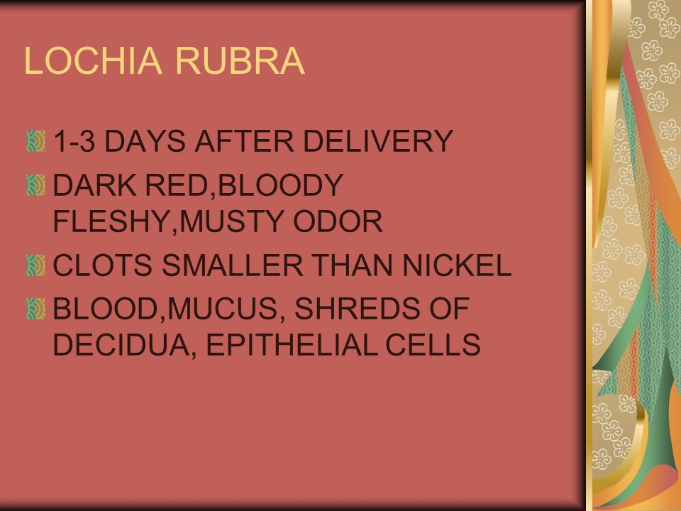 LOCHIA RUBRA 1-3 DAYS AFTER DELIVERY DARK RED,BLOODY FLESHY,MUSTY ODOR