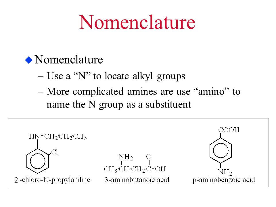 Nomenclature Nomenclature Use a N to locate alkyl groups