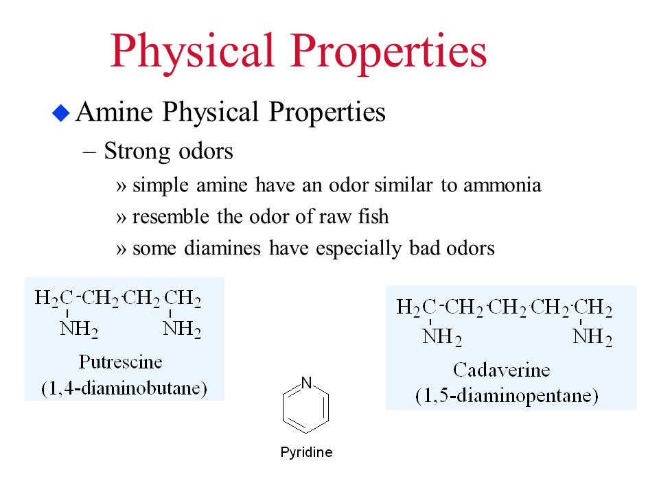 Physical Properties Amine Physical Properties Strong odors