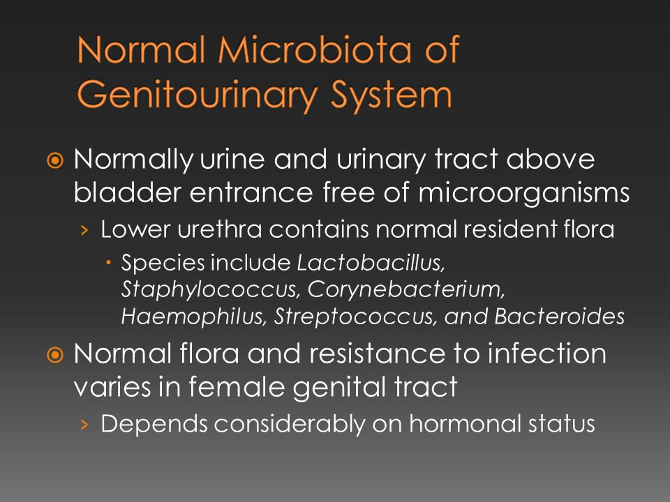 Normal Microbiota of Genitourinary System
