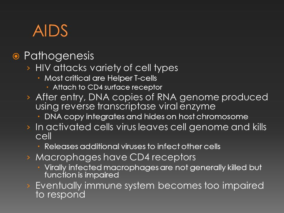 AIDS Pathogenesis HIV attacks variety of cell types