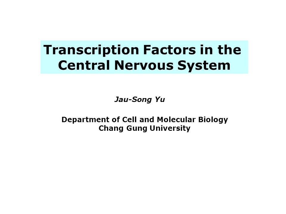 Transcription Factors in the Central Nervous System