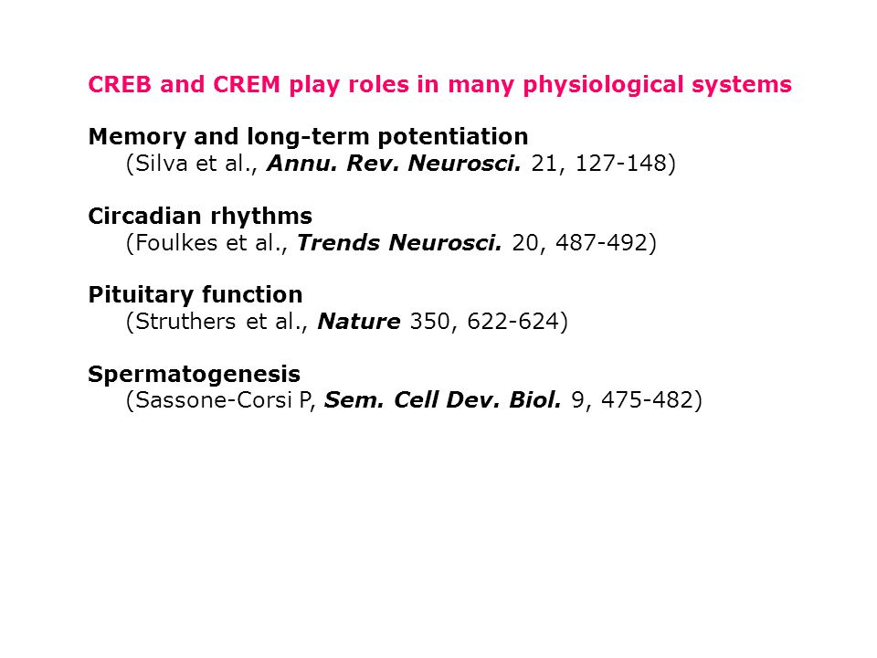 CREB and CREM play roles in many physiological systems