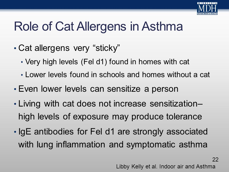 Role of Cat Allergens in Asthma