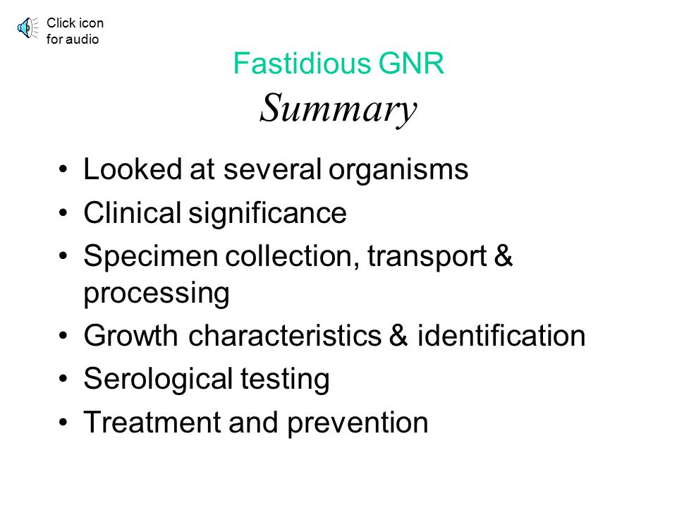 Fastidious GNR Summary