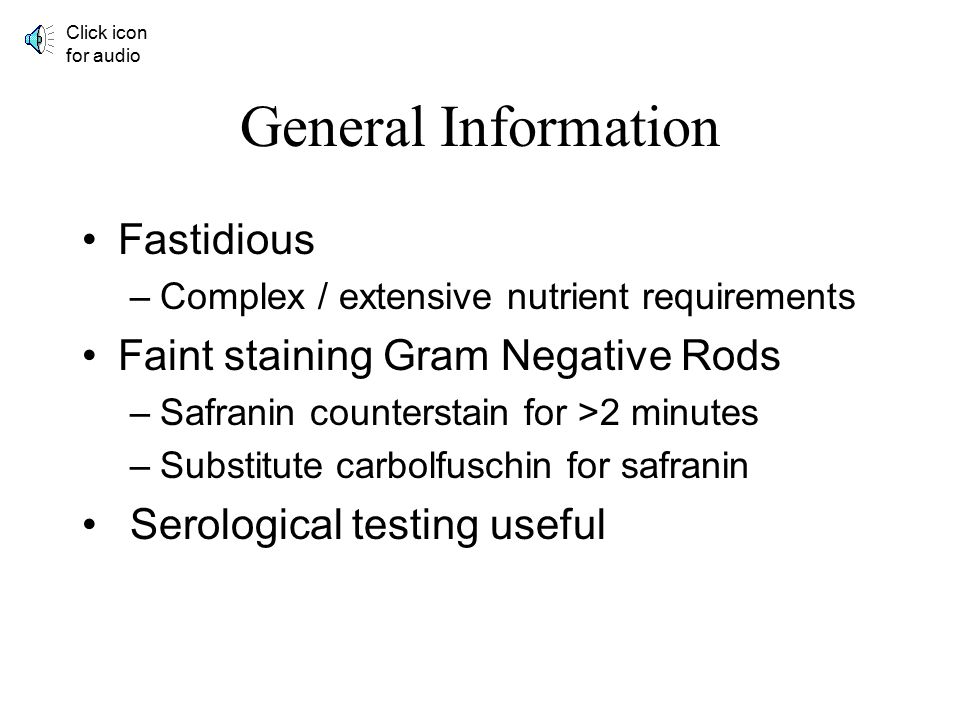 General Information Fastidious Faint staining Gram Negative Rods