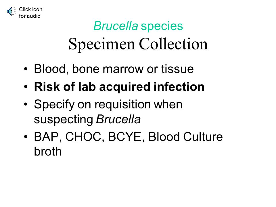 Brucella species Specimen Collection