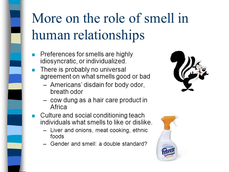 More on the role of smell in human relationships