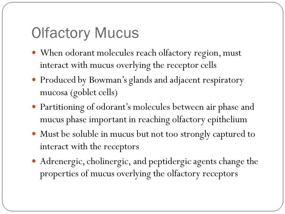 Olfactory Mucus When odorant molecules reach olfactory region, must interact with mucus overlying the receptor cells.