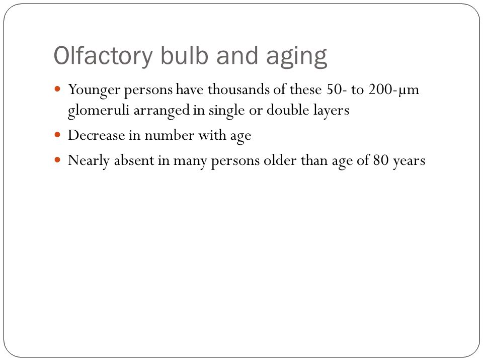 Olfactory bulb and aging