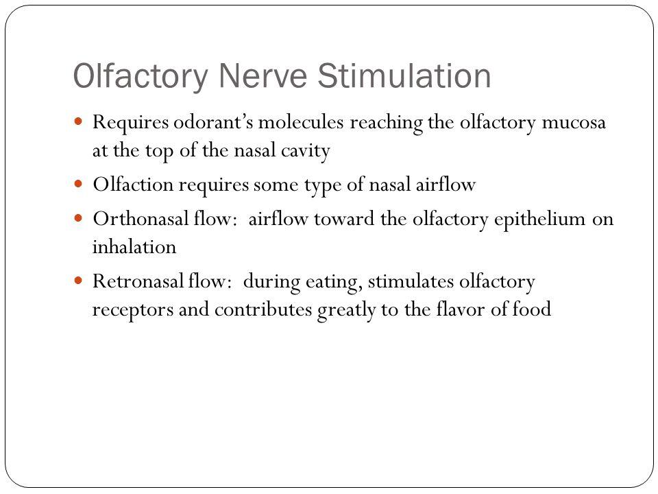 Olfactory Nerve Stimulation