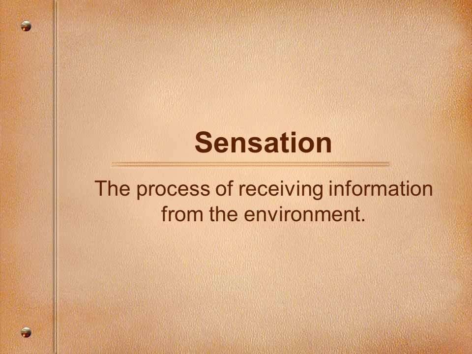 The process of receiving information from the environment.