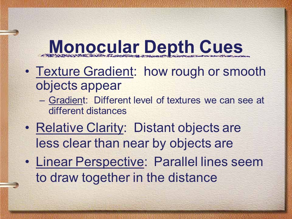 Monocular Depth Cues Texture Gradient: how rough or smooth objects appear. Gradient: Different level of textures we can see at different distances.