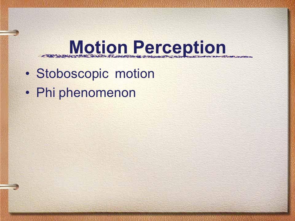 Motion Perception Stoboscopic motion Phi phenomenon